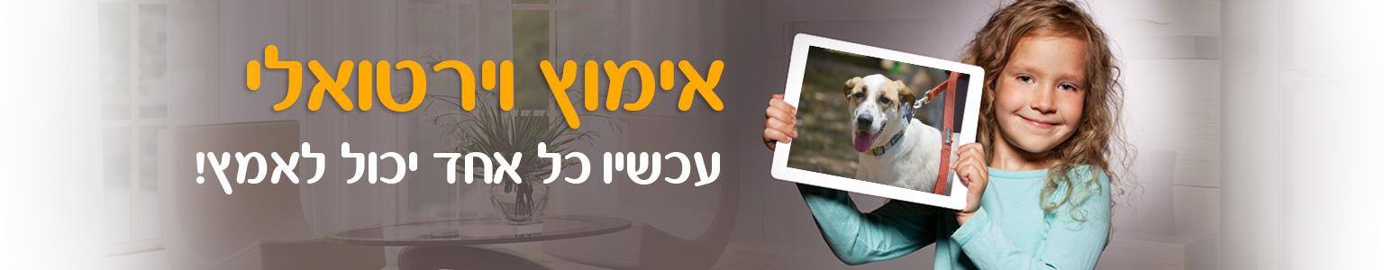 rla-slider-homepage-virtual1